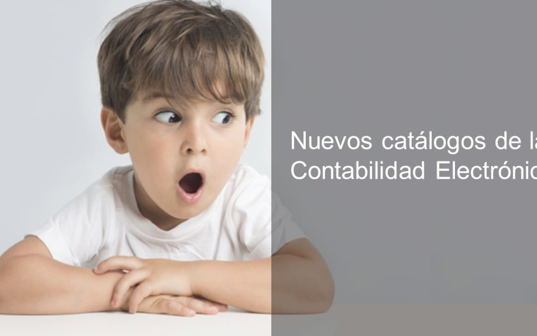 Nuevos catálogos de la Contabilidad Electrónica
